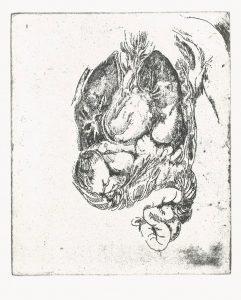 Inneres, Strichätzung, 2005