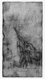 Ahornsamen 2, Strichätzung, 2007