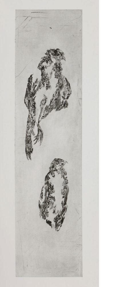 Fasan stehend, 2016, Kaltnadelradierung, 140 x 60 cm