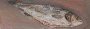 Fisch #7151, 2012