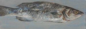 Fisch #7178, 2012