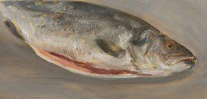Fisch #7199, 2012