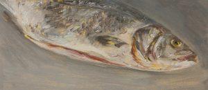 Fisch #7202, 2012