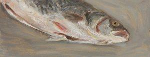 Fisch #7217, 2012