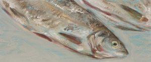 Fisch #7237, 2012