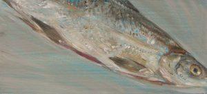 Fisch #7238, 2012