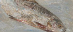 Fisch #7239, 2012