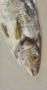 Fisch #7257, 2012