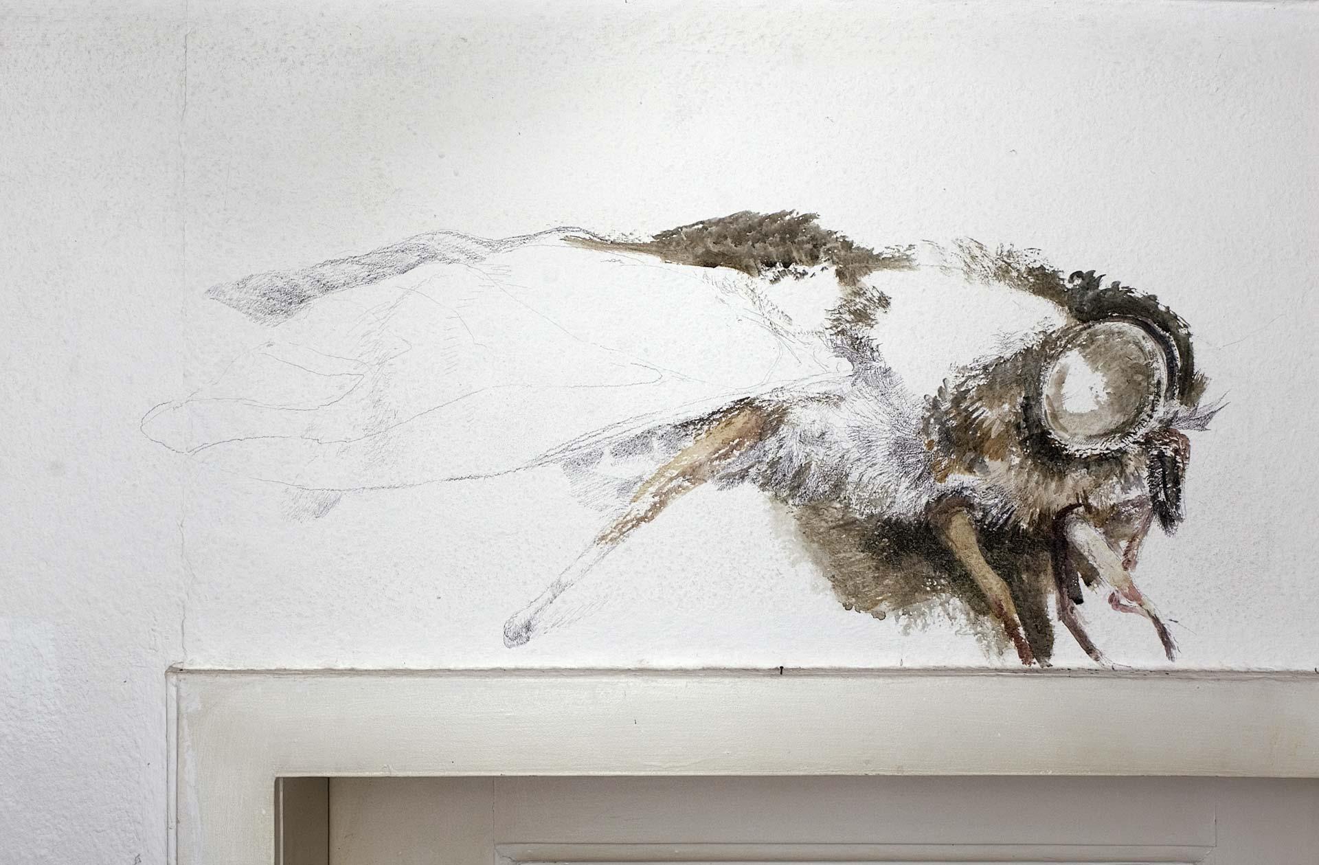 Fliege, 2008, Wandzeichnung