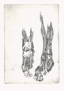 Fuß, 2005, Strichätzung