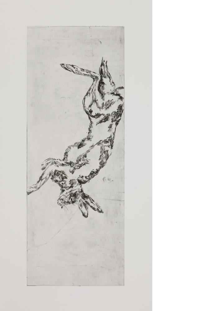 Hängender Hase, 2016, Kaltnadelradierung, 120 x 60 cm