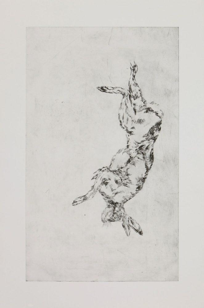 Hängender Hase 1, 2016, Kaltnadelradierung, 160 x 60 cm