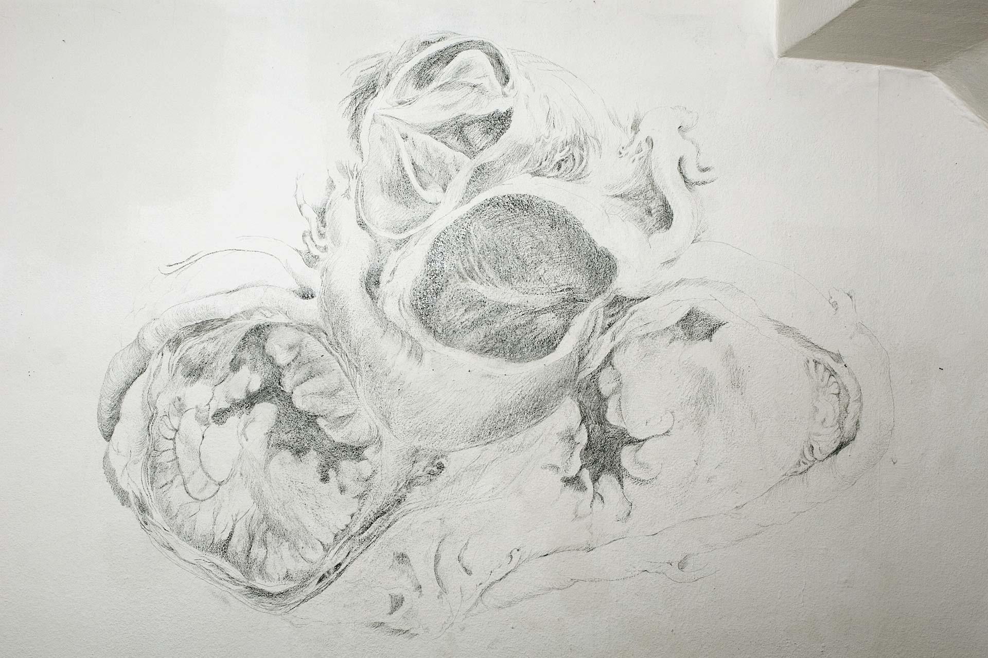 Herz, 2008, Wandzeichnung