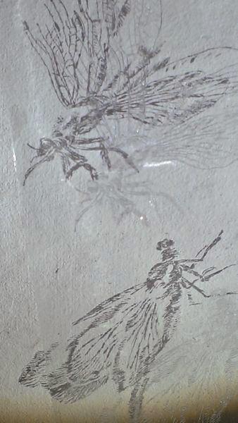 Libellen, 2013, Glasgravur, 26 x 9,5 cm