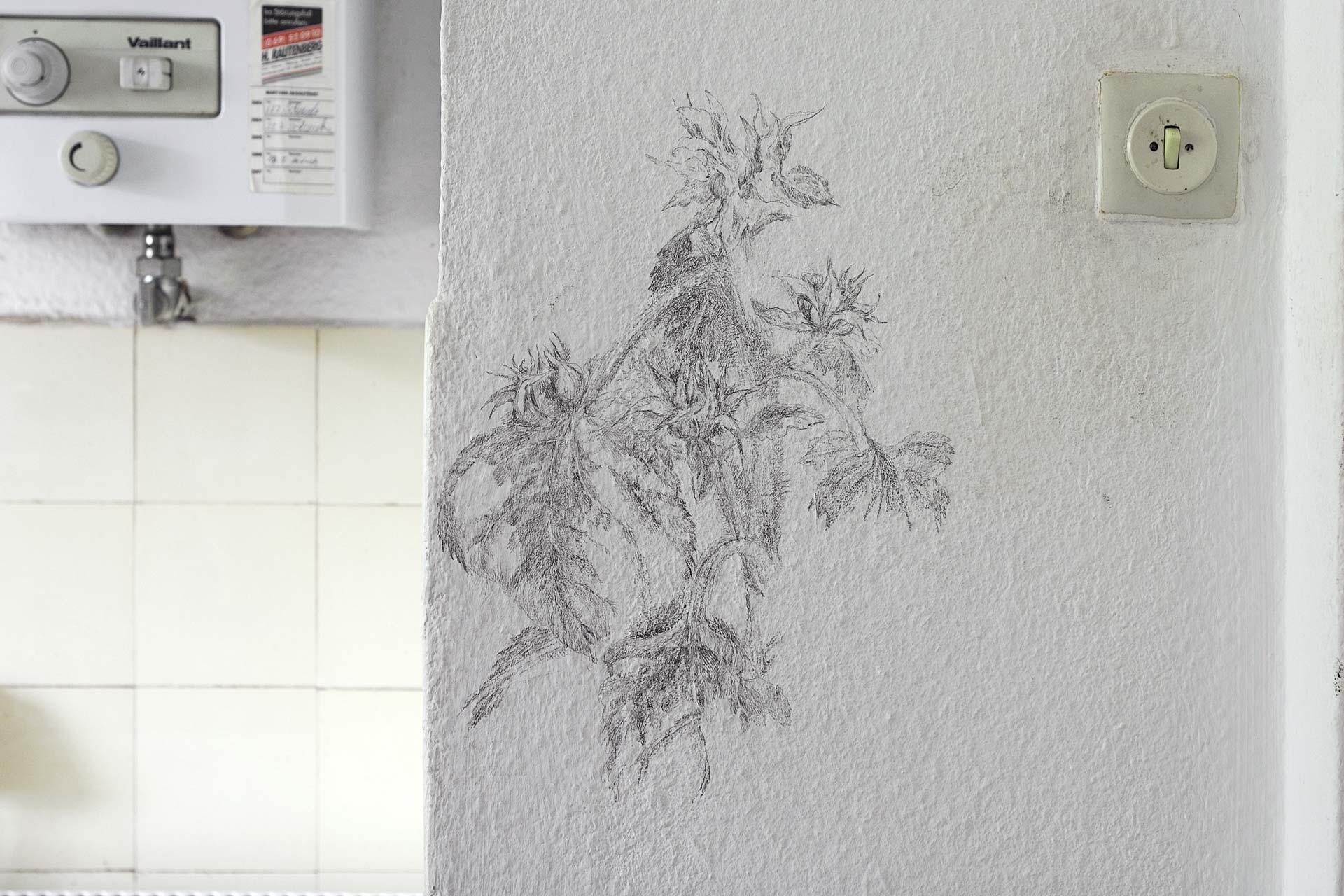 Küchenblume, 2008, Wandzeichnung