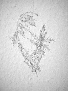 Löwenzahn, 2008, Wandzeichnung
