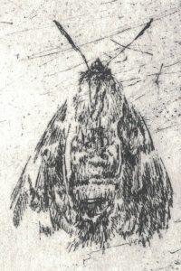 Motiv 3 (Detail), 2017, Strichätzung, 6 x 3 cm