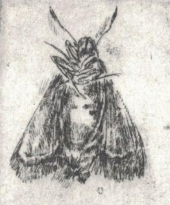 Motiv 4 (Detail), 2017, Strichätzung, 5 x 5 cm
