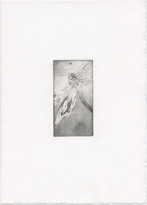 Ohne Titel, 2013, Strichätzung und Aquatinta, 10 x 5 cm
