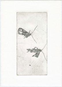 Ohne Titel, 2013, Strichätzung, 9,5 x 19,5 cm