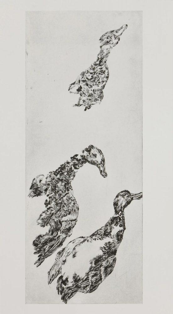 Enten 2, 2014, 100 x 40 cm