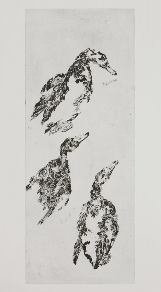 Enten 3, 2014, 100 x 40 cm