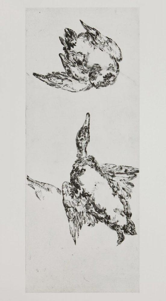 Enten 4, 2014, 100 x 40 cm