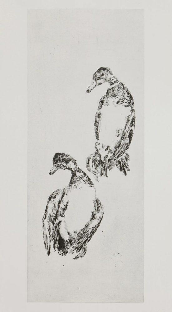 Enten 5, 2014, 100 x 40 cm