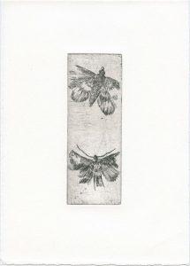 Ohne Titel, 2014, Strichätzung, 15,2 x 5,5 cm