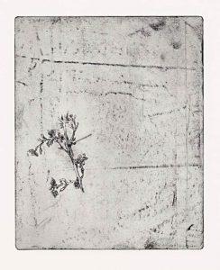 Ohne Titel, 2008, Strichätzung, 15,8 x 12,5 cm