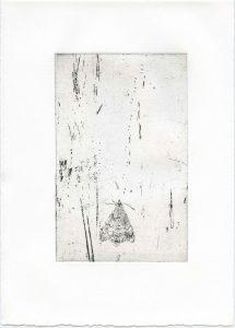 Ohne Titel, 2014, Strichätzung, 17 x 10,5 cm