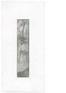 Ohne Titel, 2014, Strichätzung, 17 x 3,5 cm