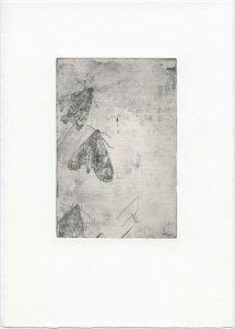 Ohne Titel, 2014, Strichätzung, 5 x 9,8 cm