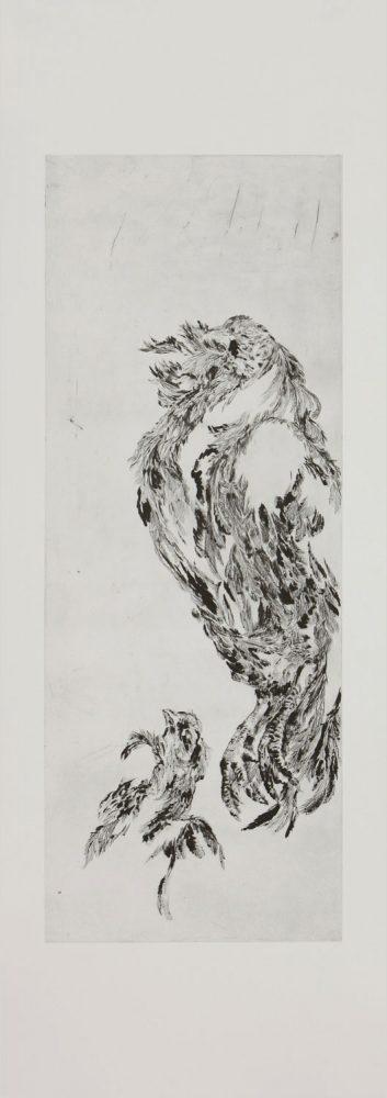 Schwarzes Huhn 2, 2016