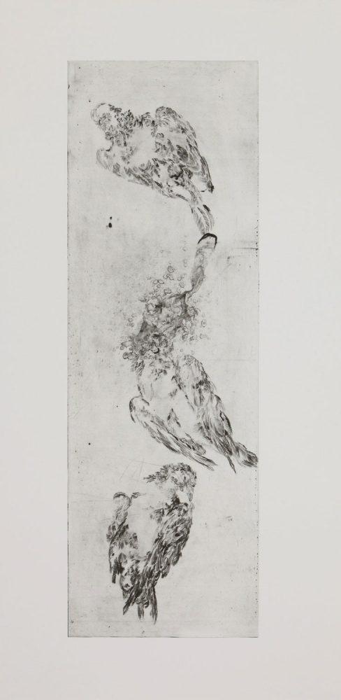 Taube verätzt, 2016, 120 x 60 cm