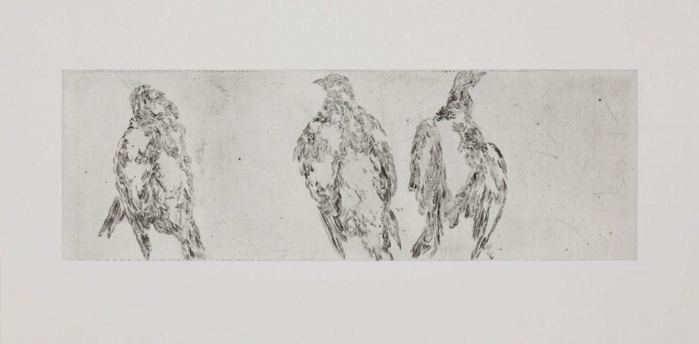 Taube Fries 1, 2016, 60 x 120 cm