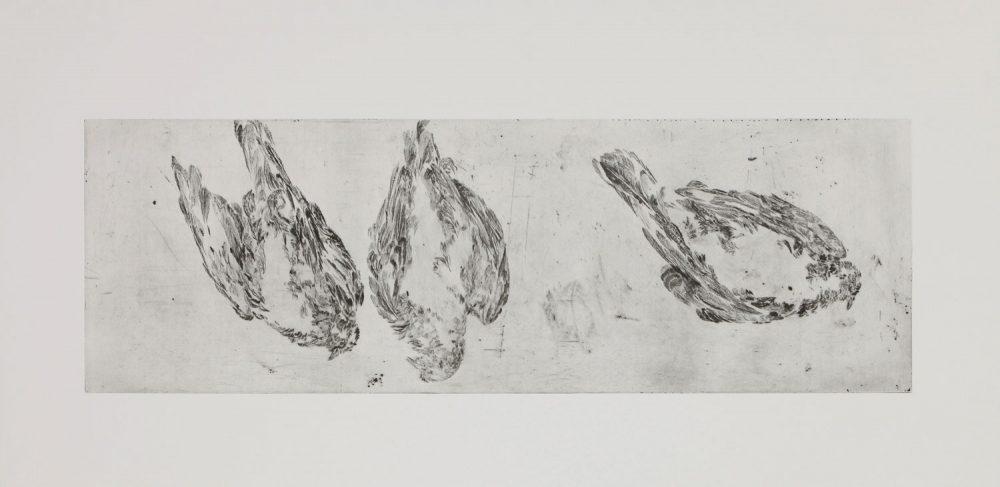 Taube Fries 2, 2016, 60 x 120 cm