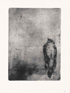 Vogelradierung, Strichätzung, 2007
