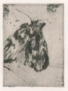 Vor dem Sommer 5, 2011, Kaltnadelradierung, 6,7 x 5 cm