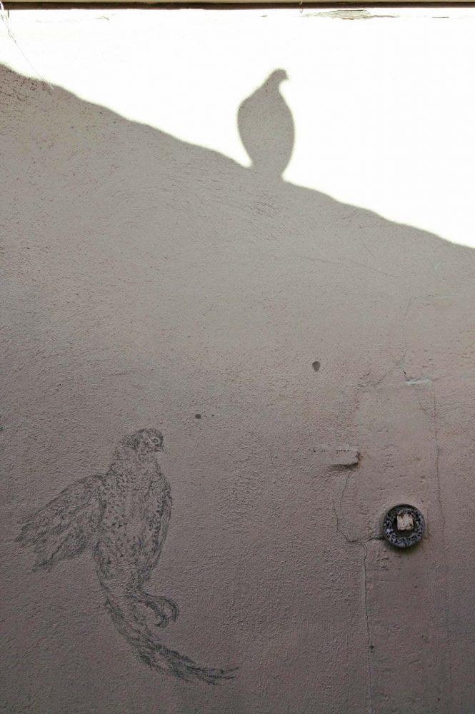 Fasan, Höchst, 2012, Wandzeichnung