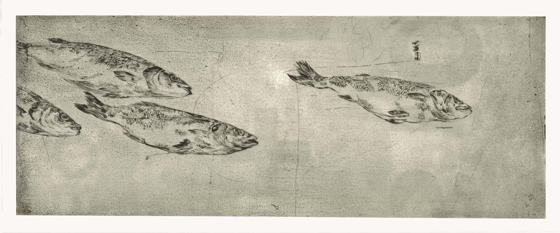 Wolfsbarsch, 2012, Kaltnadelradierung, 40 x 100 cm