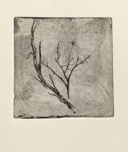 """Dürre Äste"", Blatt aus dem Leporello ""Winter"", 2008"
