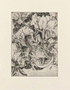 """""""Alpenveilchen"""", Blatt aus der Mappe """"Kaltnadelradierungen"""", 2004"""