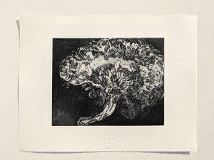 """Blatt """"Hirnschnitt"""", aus der Mappe Herzen und Hirne, 2006"""