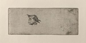 """Ohne Titel, Blatt aus dem Buch """"Staub"""", 2006"""